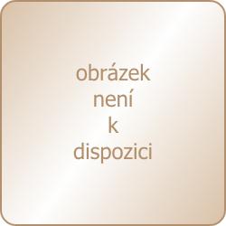 Dámská bezkosticová podprsenka TIMO 010772
