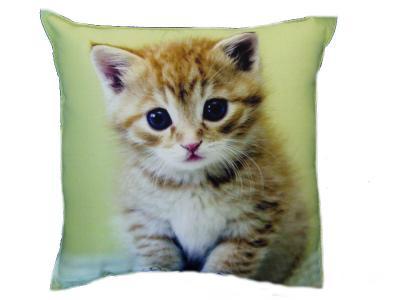 Dekorativní fotopolštářek Dadka 5 koťátko
