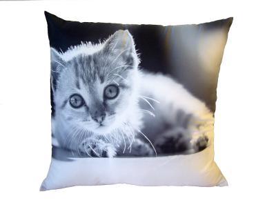 Dekorativní fotopolštářek Dadka Černobílé kotě