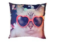Dekorativní fotopolštářek Dadka Kočka v brýlích