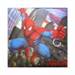 Dekorativní fotopolštářek Jerry Fabrics Spiderman