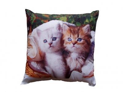 Fotopolštářek Bílé a hnědé kotě