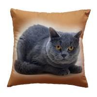 Fotopolštářek Kočka