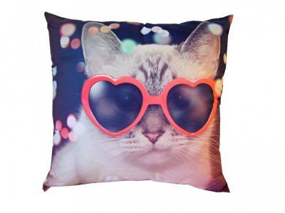 Fotopolštářek Kočka v brýlích