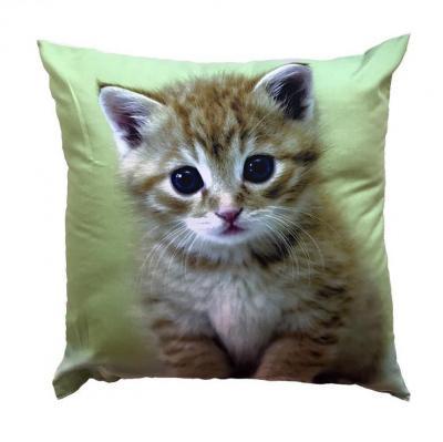 Fotopolštářek Kotě na zeleném