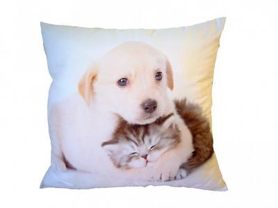 Fotopolštářek Pejsek objímající kotě