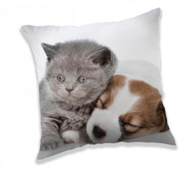 Polštářek Puppy and Kitten