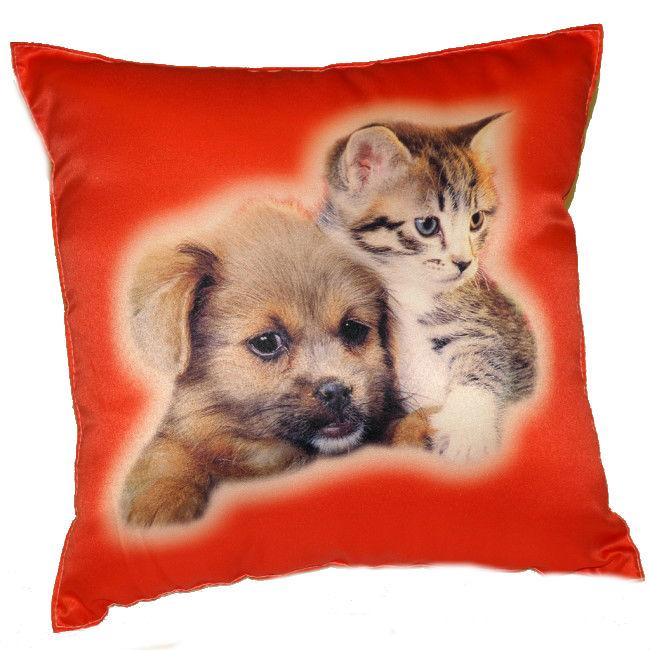 Fotopolštářek 7 - kotě a pes